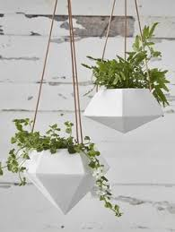 Hanging Planters Indoor by White Hanging Planter Pots With Green Ferns Against Neutral Grey
