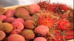 lychee fruit peeled rambutans vs lychees the delicious and uncommon fruits youtube