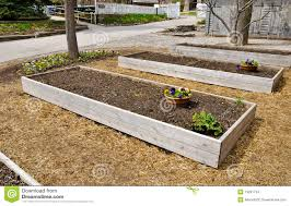 raised flower beds stock images image 19291734
