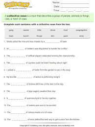 select the collective noun worksheet turtle diary