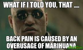 Back Pain Meme - what if i told you that back pain is caused by an overusage of