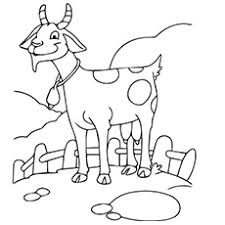 free coloring pages goats top 25 free printable goat coloring pages online