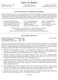 business development resume examples