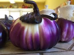 garden eggplant denise canellos ms cns