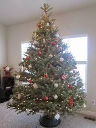 laurabird the tree