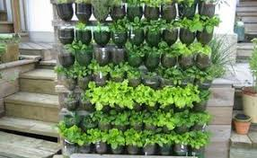 Vertical Garden Pot - 10 diy vertical garden ideas hometalk