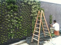 come realizzare un giardino pensile come realizzare pareti vegetali quale giardino ecco come