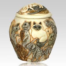 cat urn galore cremation urn