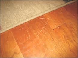 Fix Hardwood Floor Scratches - repair scratches in wood floor wood flooring ideas