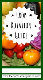 crop rotation guide the homestead garden