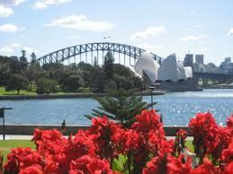 Botanic Garden Sydney 10 Best Sydney Botanic Garden Images On Pinterest Botanical