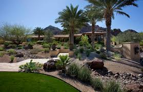 Backyard Desert Landscaping Ideas Desert Landscaping Ideas Basic To Design A Great Backyard