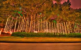 river oaks lights in houston our ulr properties