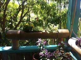 best little eco resort in town u2013 tropical treehouse in rincon