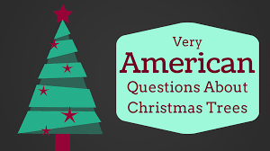 very american questions about christmas trees american faultier