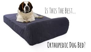 pet support systems ultimate luxury gel memory foam orthopedic dog