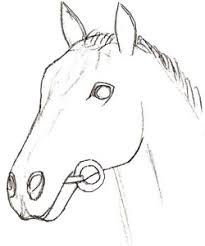 how to draw a horse head draw step by step