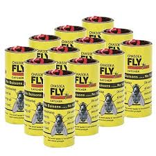 fly ribbon buy chasoea fly paper insect sticky trap fly paper strips fly