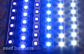small flat led lights ecoxotic stunner led strips totally unboxed news reef builders the