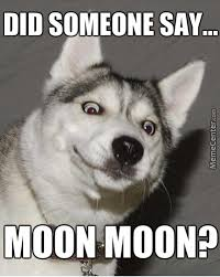 Moon Moon Memes - no moon moon by bakexcake meme center