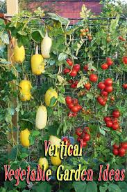 family vegetable garden vertical vegetable garden ideas quiet corner