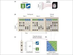 pattern of analysis beyond mind reading multi voxel pattern analysis of fmri data