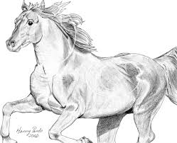 mustang horse drawing horse running by hpequineart on deviantart