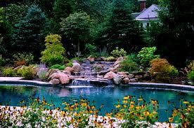 Desert Backyard Landscaping Ideas Furniture Splendid Images About Pool Ideas Swimming Pools Plants