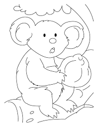 black nose koala coloring pages download free black nose koala