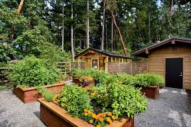 Backyard Raised Garden Ideas Rustic Landscape And Yard With Raised Beds U0026 Fence In Gig Harbor