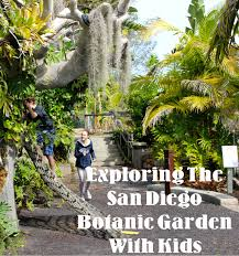 San Diego Botanical Gardens Encinitas Be Brave Keep Going Visiting San Diego Botanic Garden With