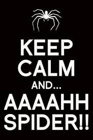 Stay Calm Meme - 78 best keep calm memes images on pinterest calming calm down