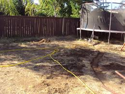 Diy Backyard Pool by This Insane House Diy Backyard Landscaping Above Ground Pool