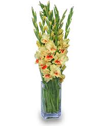 port orange florist east orange florist east orange nj flower shop s flowers