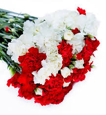 wholesale carnations farm2door wholesale flower combo box 25 white carnations 25