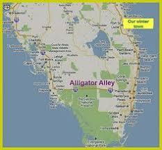 alligators in map tips for driving florida s alligator alley alligators fort