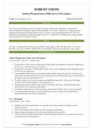 system analyst resume system analyst resume doc 100 sle of business analyst resume