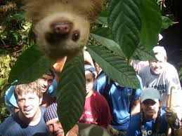 Sexy Sloth Meme - that s weird 17 funny pics memes team jimmy joe