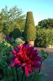 85 best botanical gardens images on pinterest botanical gardens