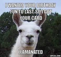 Meme Generator Happy - dramallama meme generator i wanted your birthday fun to last so i