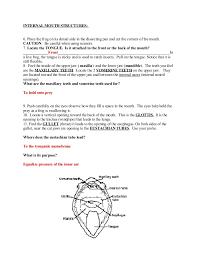 frog dissection worksheet worksheets