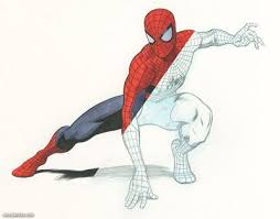 141 best drawing the spider man images on pinterest marvel