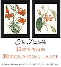 free printable orange botanical art simply made by rebecca