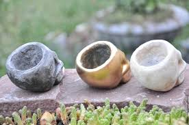 buy creative planters made of concrete skull pot for cacti and