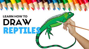 how to draw and color reptiles coloring pages for kids