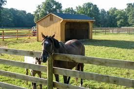 post u0026 beam horse barns run in shed row rancher with overhang