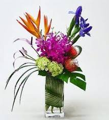 flower of the month club 662 best flower gifts images on fresh flowers dog cat