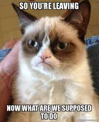 Now What Meme - so you re leaving now what are we supposed to do grumpy cat make
