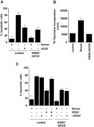 the kaposi u0027s sarcoma associated herpesvirus g protein coupled