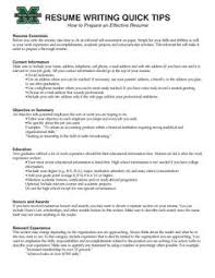 Resume Writer Online by Exclusive Ideas Effective Resume Writing 13 Effective Resume Example